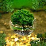 Comment conserver l'environnement en réduisant son empreinte écologique
