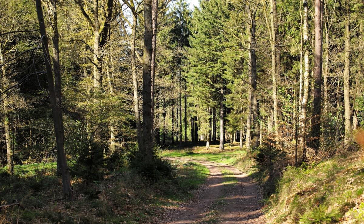 La Belgique proteger l environnement en faisant du tourisme